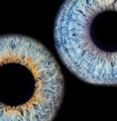 The Eyes are the Window to the Soul: An Intro to Iridology