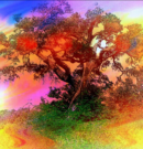 The Secret Meaning of the Tree of Life