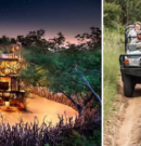 Stunning Treehouse Lets You Sleep Under the Stars in the Heart of Africa's Wilderness